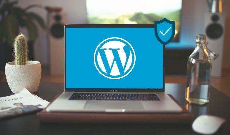WordPress Güvenliği Neden Önemlidir, Alabileceğiniz Kişisel Önlemler Nelerdir?